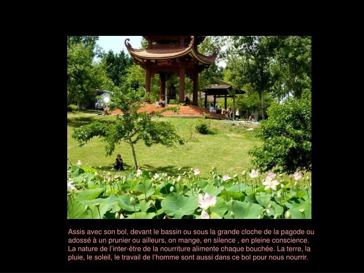 Assis avec son bol, devant le bassin ou sous la grande cloche de la pagode ou adossé à un prunier ou ailleurs, on mange, en silence , en pleine conscience.