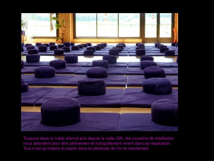 Toujours dans le noble silence pris depuis la veille 22h, les coussins de méditation nous attendent pour être pleinement et tranquillement vivant dans sa respiration. Tout n'est qu'inspire et expire dans la plénitude de l'ici et maintenant.