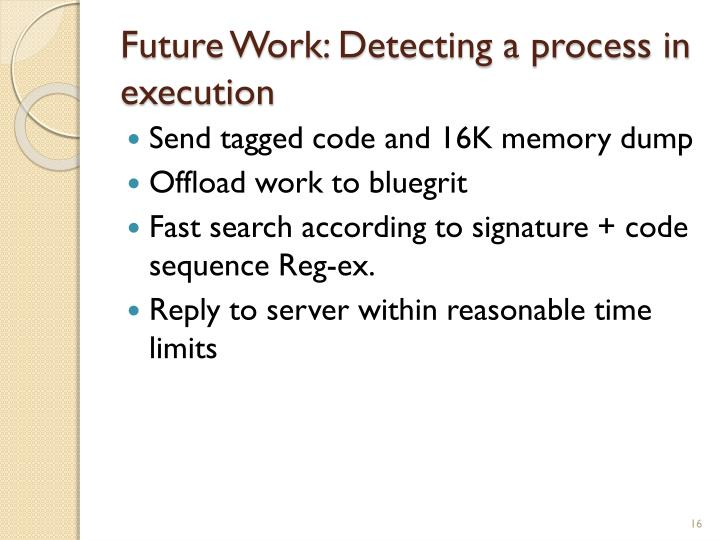 Future Work: Detecting a process in execution