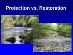 protection vs restoration
