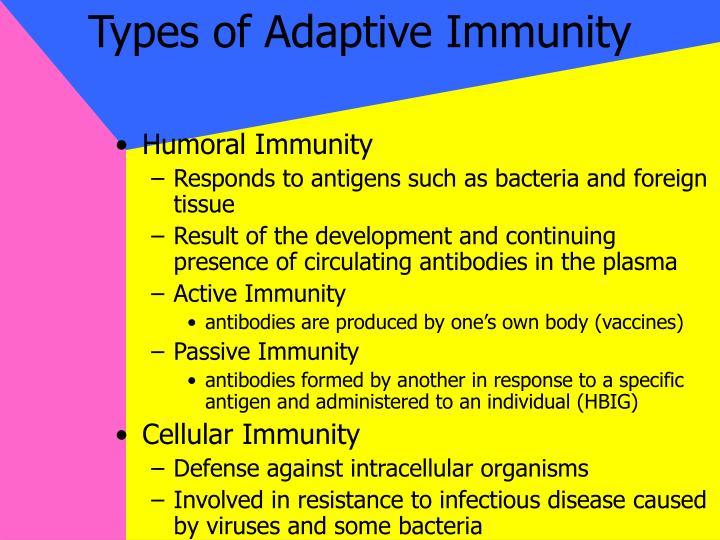 Types of Adaptive Immunity
