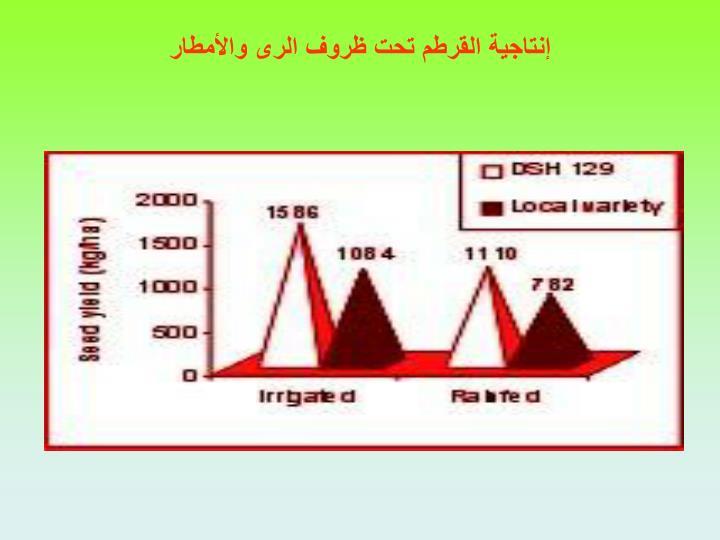 إنتاجية القرطم تحت ظروف الرى والأمطار