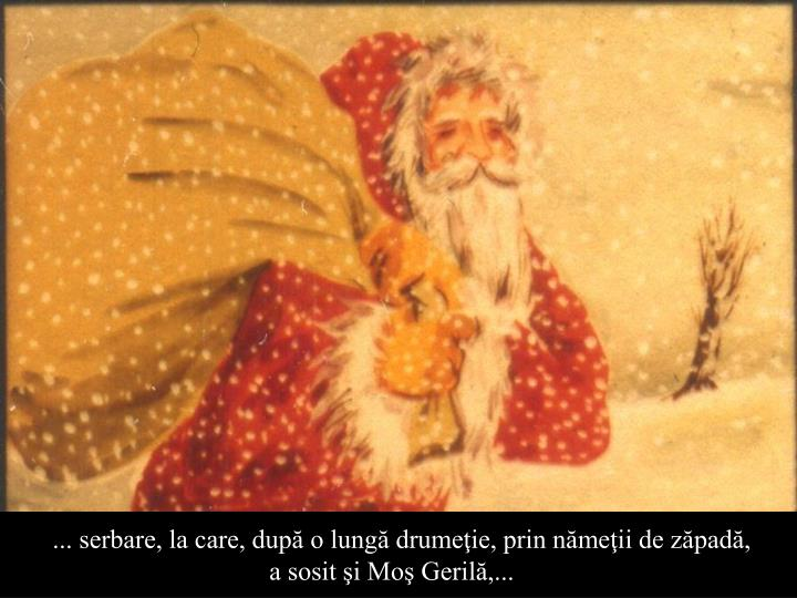 ... serbare, la care, după o lungă drumeţie, prin nămeţii de zăpadă,      a sosit şi Moş Gerilă,...