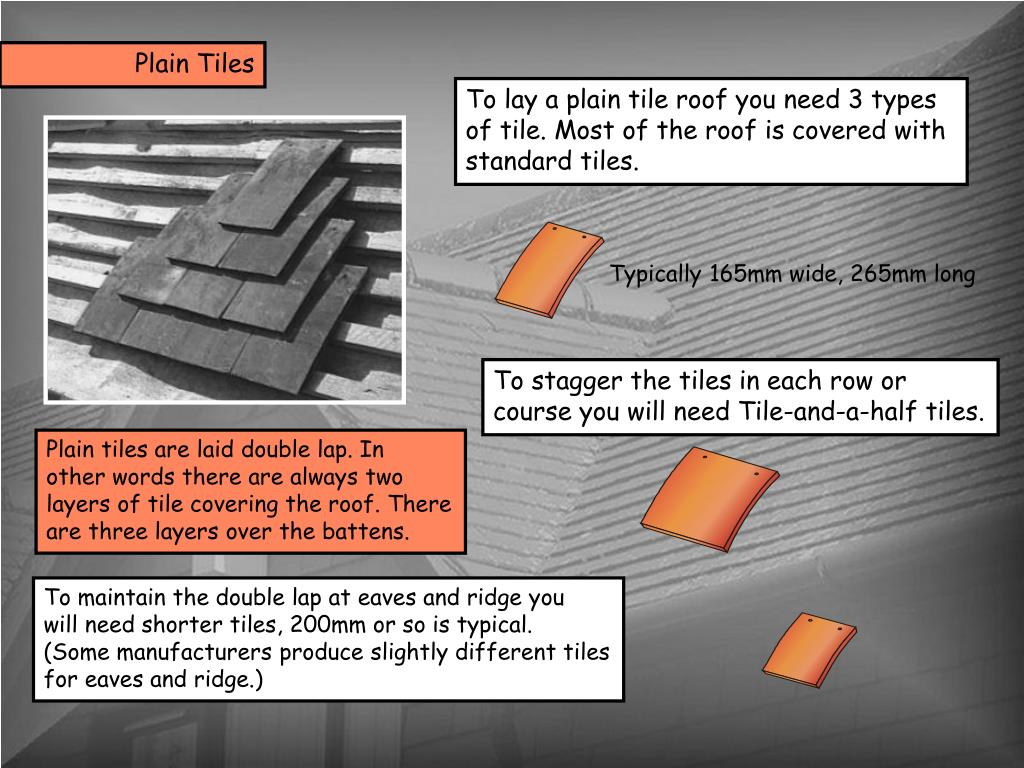 PPT - Plain tiles are laid double lap  In other words there are