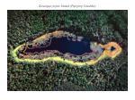 zarastaj ce jezioro smolak pojezierze suwalskie
