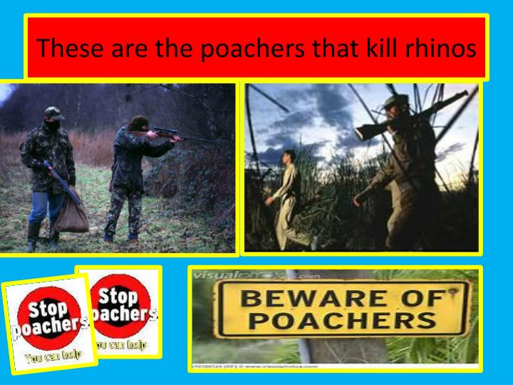 These are the poachers that kill rhinos