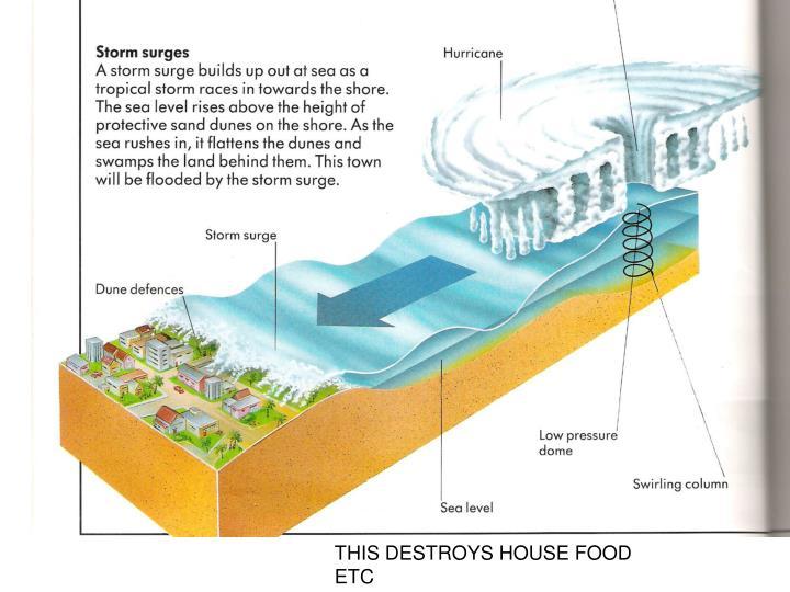 THIS DESTROYS HOUSE FOOD ETC