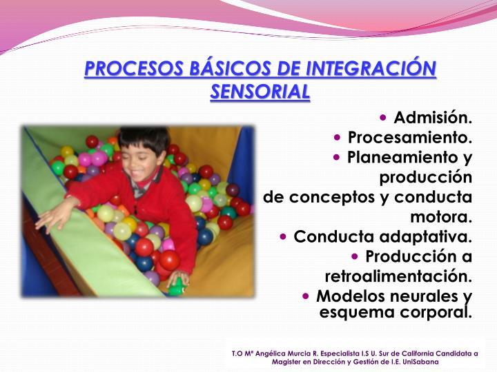 PROCESOS BÁSICOS DE INTEGRACIÓN