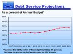 debt service projections