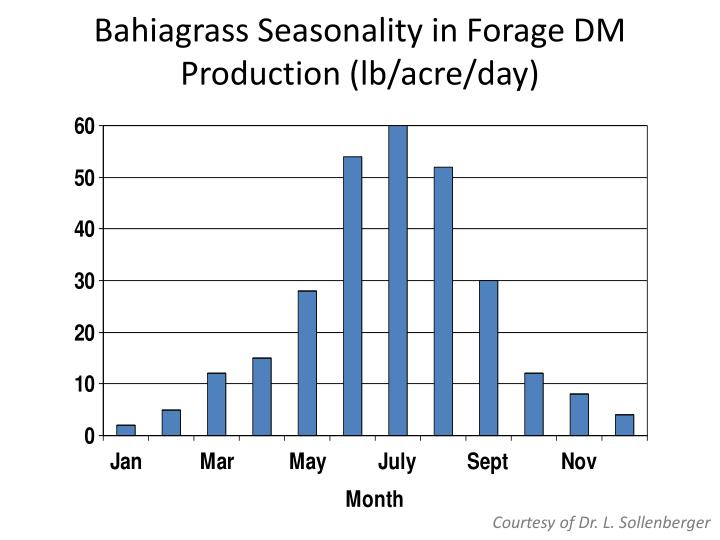 Bahiagrass seasonality in forage dm production lb acre day
