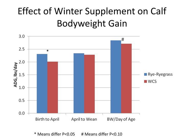 Effect of Winter Supplement on Calf Bodyweight Gain