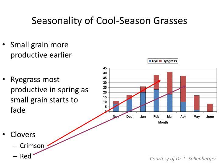 Seasonality of Cool-Season Grasses