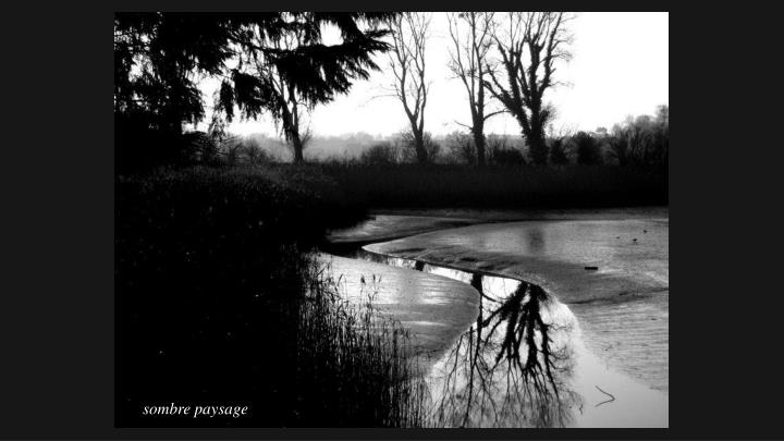 sombre paysage