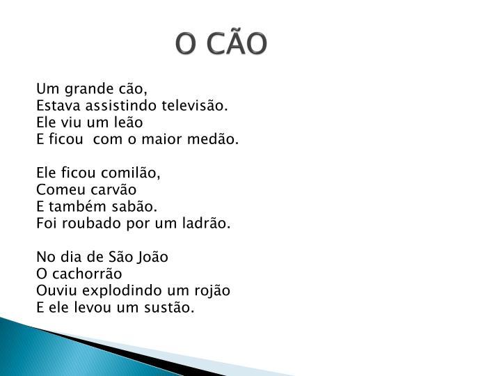 O c o