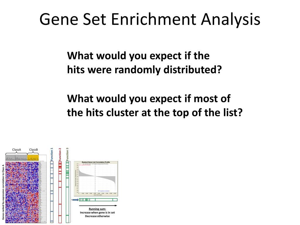 PPT - Gene Set Enrichment Analysis PowerPoint Presentation