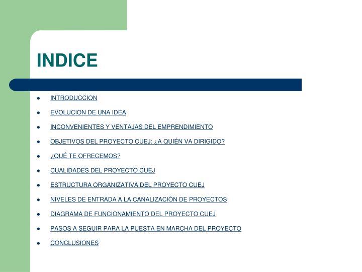 PPT - CANALIZACIÓN UNIVERSITARIA DE EMPRENDIMIENTO JUVENIL (CUEJ ... 4b21cd5422f17