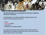what is the iditarod insider