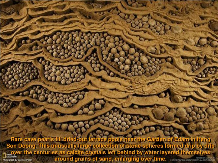 Rare cave pearls fill dried-out terrace pools near the Garden of Edam in Hang Son Doong. This unusually large collection of stone spheres formed drip by drip over the centuries as calcite crystals left behind by water layered themselves around grains of sand, enlarging over time.