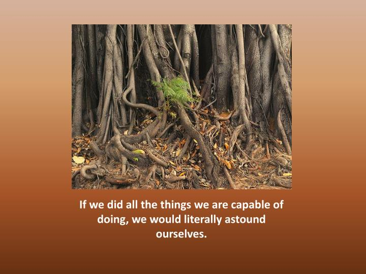 If we did all the things we are capable of doing we would literally astound ourselves