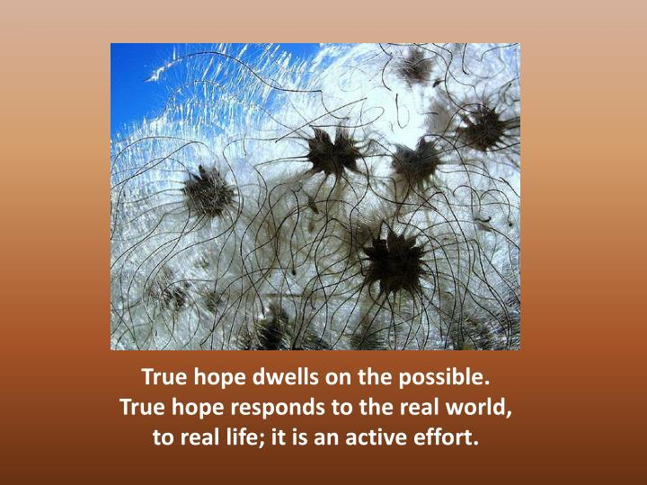 True hope dwells on the possible.