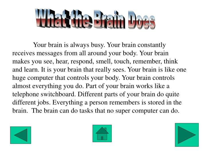 What the Brain Does