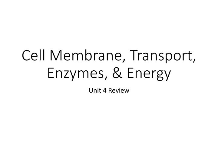 cell membrane transport enzymes energy n.