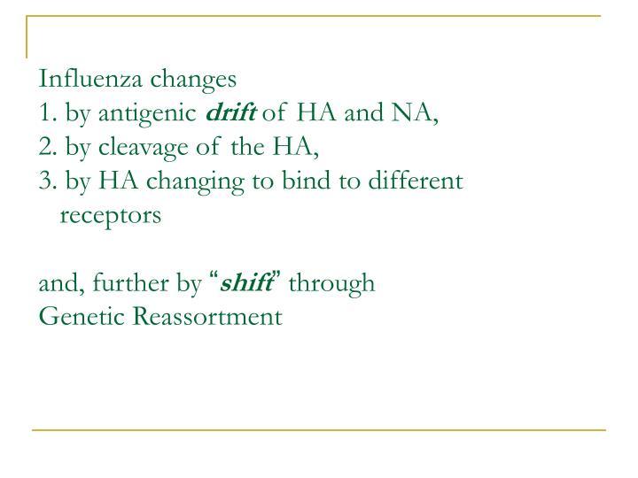 Influenza changes