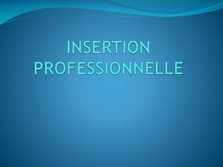 INSERTION PROFESSIONNELLE