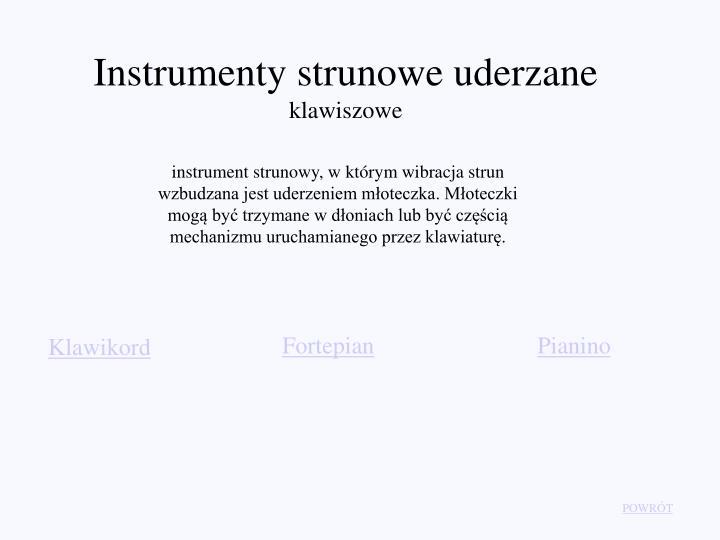 Instrumenty strunowe uderzane