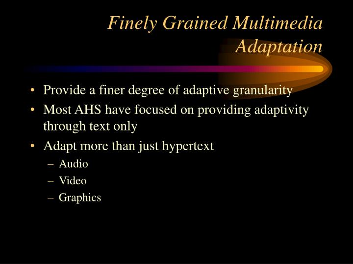 Finely Grained Multimedia Adaptation