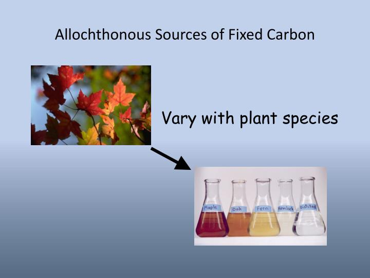 Allochthonous Sources of Fixed Carbon