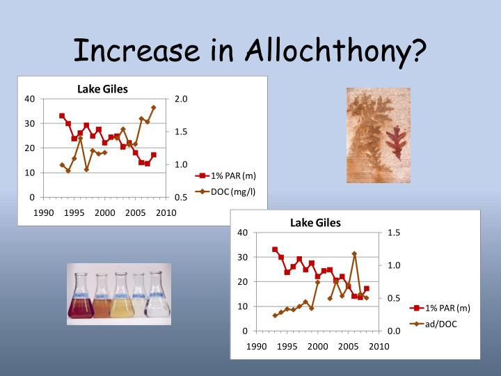 Increase in Allochthony?