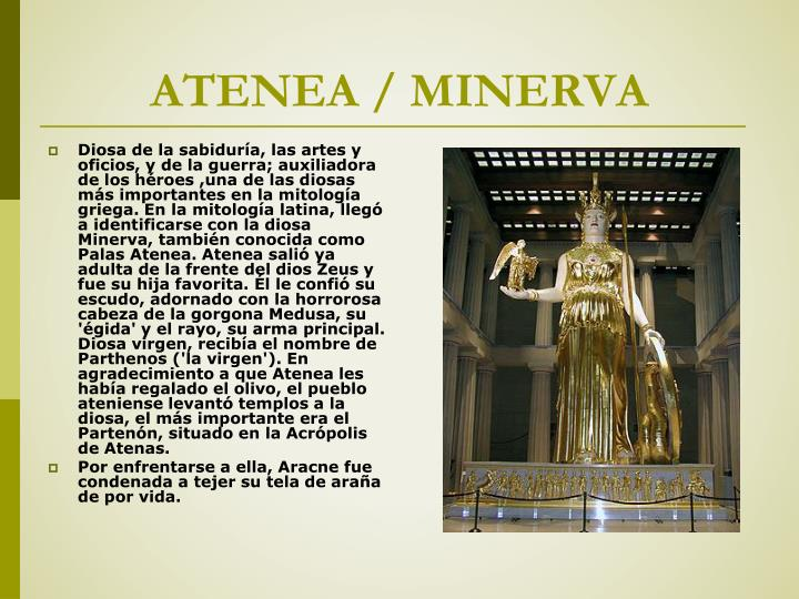 Atenea minerva
