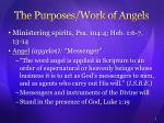the purposes work of angels