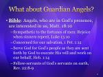what about guardian angels1