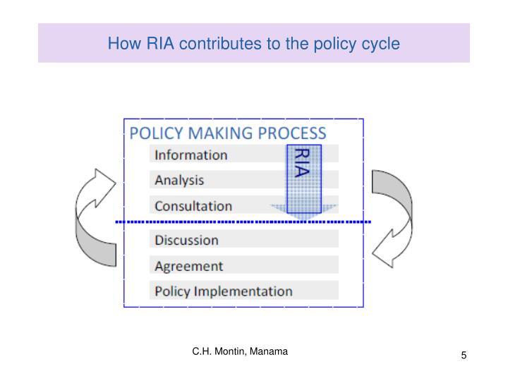 How RIA contributes to the policy cycle