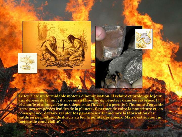 """Le feu a été un formidable moteur d'hominisation. Il éclaire et prolonge le jour aux dépens de la nuit ; il a permis à l'homme de pénétrer dans les cavernes. Il réchauffe et allonge l'été aux dépens de l'hiver ; il a permis à l'homme d'envahir les zones tempérées froides de la planète. Il permet de cuire la nourriture et, en conséquence, de faire reculer les parasitoses. Il améliore la fabrication des outils en permettant de durcir au feu la pointe des épieux. Mais c'est surtout un facteur de convivialité""""."""