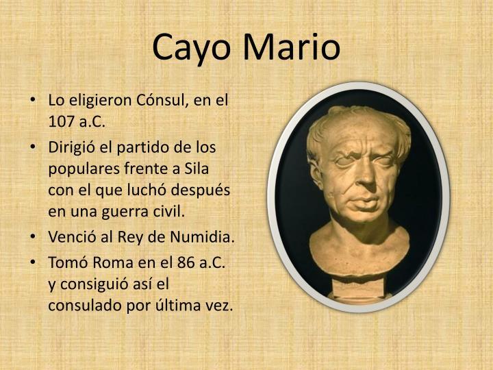 Cayo Mario