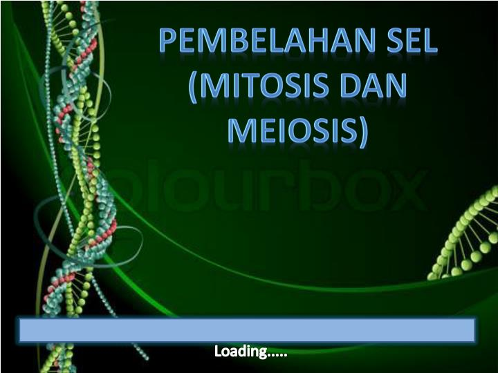 Ppt loading powerpoint presentation id4939081 pembelahan sel mitosis dan meiosis ccuart Image collections