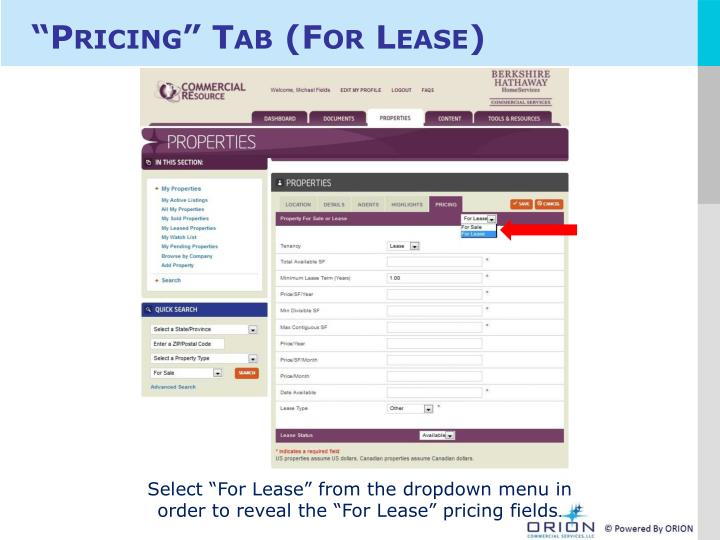 """Pricing"" Tab (For Lease)"
