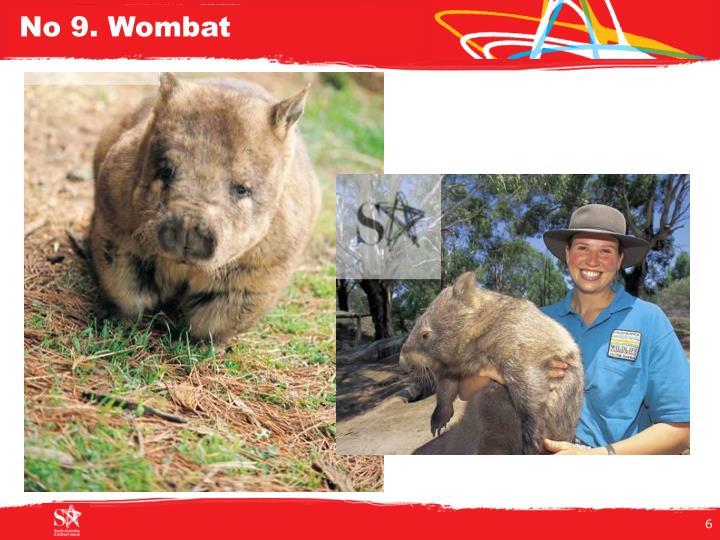No 9. Wombat
