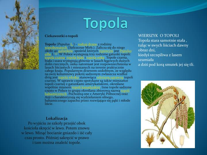 Ppt Topola Powerpoint Presentation Free Download Id4944221