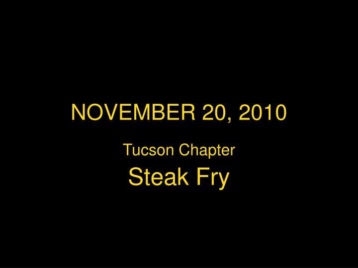 NOVEMBER 20, 2010