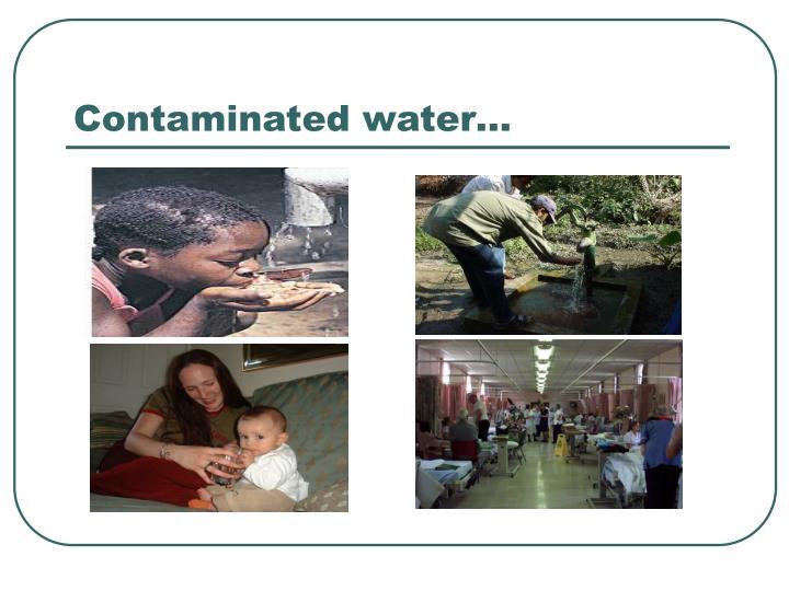 Contaminated water…
