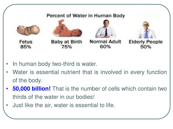 In human body two-third is water.