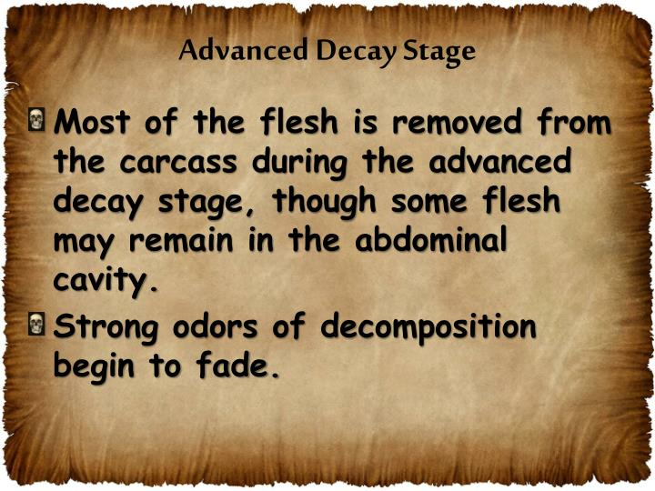 Advanced Decay Stage