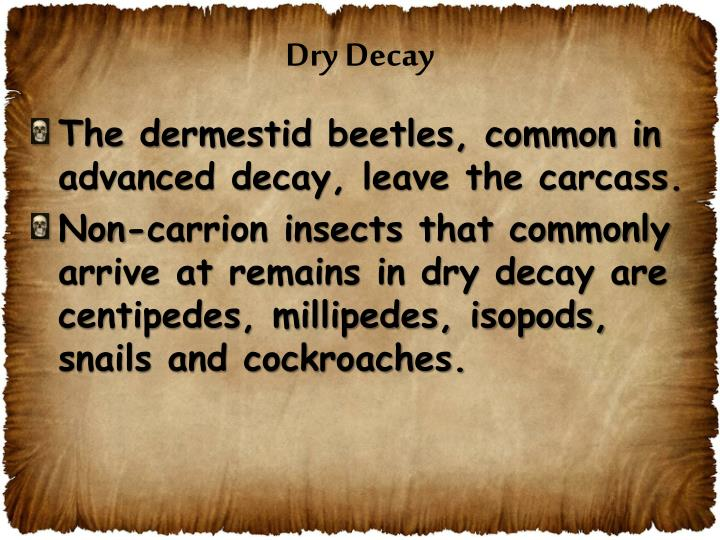 Dry Decay