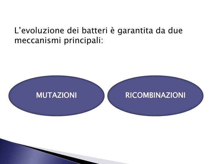 L'evoluzione dei batteri è garantita da due meccanismi principali: