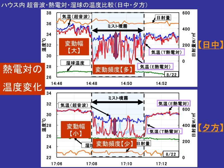 ハウス内 超音波・熱電対・湿球の温度比較(日中・夕方)