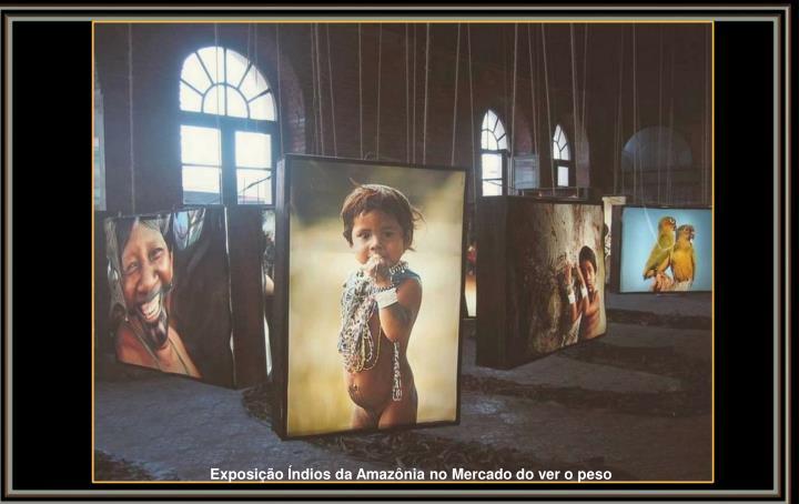 Exposição Índios da Amazônia no Mercado do ver o peso